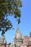 Wat Phra SiSanphet Ayuthaya, Thailand Arkivfoton