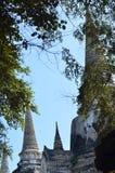 Wat Phra SiSanphet Ayuthaya, Thailand Royaltyfria Foton