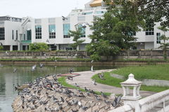 Wat-phra sri bangkhen Lizenzfreies Stockfoto
