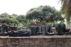 Wat Phra Sri Sanpetch Temple en Ayutthaya Fotografía de archivo