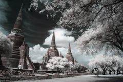 Wat Phra Sri Sanphet寺庙,阿尤特拉利夫雷斯,泰国。 库存照片
