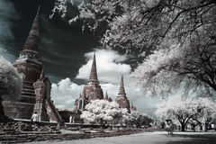 Wat Phra Sri Sanphet Temple Ayutthaya, Thailand. Arkivfoton