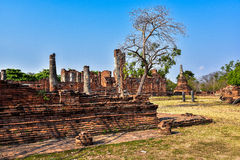 Wat Phra Sri Sanphet the world heritage site in ayutthaya, Thailand. Ancient wall of Wat Phra Sri Sanphet the world heritage site in ayutthaya, Thailand Royalty Free Stock Photography