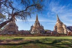 Wat Phrasisanpetch in the Ayutthaya Historical Park Stock Photos