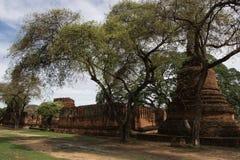 Wat Phrasisanpetch en el parque histórico de Ayutthaya Fotos de archivo libres de regalías