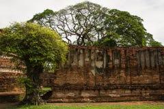 Wat Phrasisanpetch en el parque histórico de Ayutthaya Foto de archivo