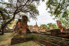 Wat Phrasisanpetch w Ayutthaya prowinci, Tajlandia Obraz Royalty Free