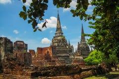 Wat Phrasisanpeth Стоковое Фото