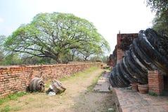 Wat Prasrisanphet Fotografia Stock