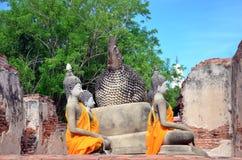 Wat Puttaisawan菩萨雕象在阿尤特拉利夫雷斯,泰国 免版税库存照片