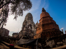 Wat Rat Burana forntida Ayutthaya, Thailand royaltyfria foton