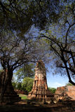 Wat Ratchaburana in Ayutthaya, Thailand Stockbilder
