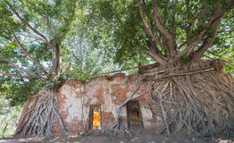 Wat Sang katai Ang tong province, Thailand Royalty Free Stock Image