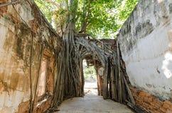 Wat Sang Kratai är 400 år gammal tempel Royaltyfria Foton