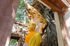 Wat Sang Kratai är 400 år gammal tempel Royaltyfri Bild