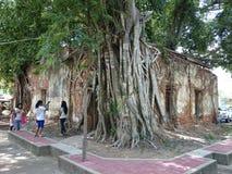 Wat-sangkratai. Temple bodhi-tree church thailand stock photo