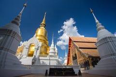 Wat Suan Dok寺庙的金黄塔在清迈 图库摄影