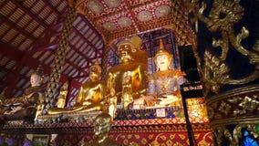 Wat Suan Dok Buddha image stock footage