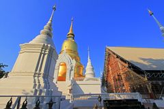 Wat Suan Dok Chiang Mai, Thailand Arkivfoto