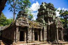 Wat Ta Prohm Fotografie Stock Libere da Diritti