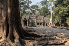 Wat Ta Prohm ruins at Angkor Wat. Ancient ruins of Wat Ta Prohm at the Angkor Wat historical complex in Siem Reap Cambodia. the entrance to the ancient Buddhist Stock Images