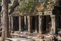 Wat Ta Prohm ruins at Angkor Wat. Ancient ruins of Wat Ta Prohm at the Angkor Wat historical complex in Siem Reap Cambodia. The stone pillar ruins in the temple Stock Image
