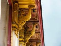 Wat Ten paska kościół łabędź zdjęcia royalty free