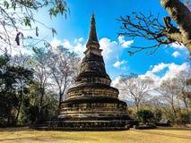 Wat Umong塔,清迈,泰国 免版税库存照片