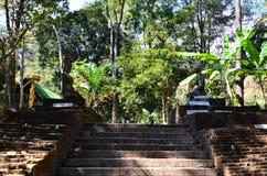 Wat Umong Чиангмай, Таиланд Стоковые Фотографии RF
