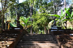 Wat Umong Chiang Mai, Ταϊλάνδη Στοκ φωτογραφίες με δικαίωμα ελεύθερης χρήσης