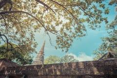 Wat Umong Suan Puthatham é um templo budista das pessoas de 700 anos no Ch Fotos de Stock Royalty Free