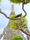 Wat Un-eseguito Fotografia Stock