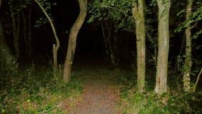 Wat is vooruit in de duisternis? stock foto