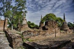 Wat w Ayutthaya Tajlandia Asia Obraz Royalty Free