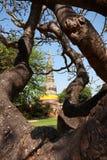 Wat yai chai mongkol. Is an anceint temple in Thailand Stock Photos