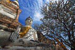 Wat Yai Chai Mongkol Ayudhya landskap Arkivfoto