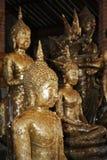 Wat Yai Chai Mongkol tempel, Thailand Royaltyfri Bild