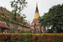 Wat Yai Chai Mongkon Imagens de Stock
