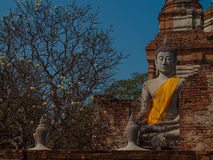Wat Yai Chaimongkol Ayutthaya ,Thailand. Royalty Free Stock Photo