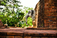 Wata Aranyik słonia głowy statuy świątynia Obrazy Royalty Free