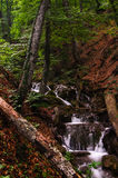 Wataerfall in forest, Crimea, Ukraine Royalty Free Stock Photos