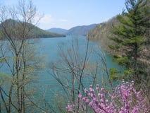 Watauga湖 库存图片