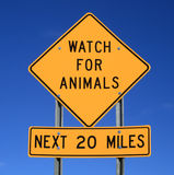 Watch for animals sign Royalty Free Stock Images