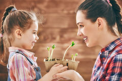 Watch as a growing sprout. Cute child girl helps her mother to care for plants. Happy family engaged in gardening in the backyard. Mother and her daughter watch Stock Photography