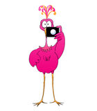 Watch the Birdie. Cartoon of a giant pink flamingo or fantasy bird holding a camera Royalty Free Stock Photos