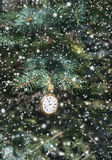 Watch on conifer branch with snow. Vintage pocket watch showing midnight and hanging on natural conifer branch outside, vertical Christmas and New Year card with royalty free stock photos