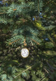 Watch on conifer branch. Vintage pocket watch showing midnight and hanging on natural conifer branch outside, vertical Christmas and New Year card stock photos