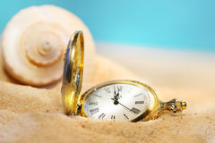 Watch lost in the sand. With seashell behind Stock Image