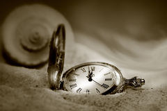 Watch lost in the sand/Sepia. Watch lost in the sand with seashell behind/ Sepia tone Stock Photo