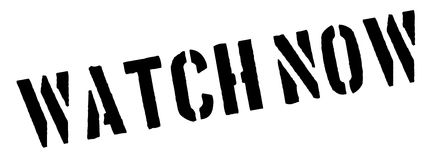 Watch Now black rubber stamp on white. Print, impress, overprint Royalty Free Stock Image